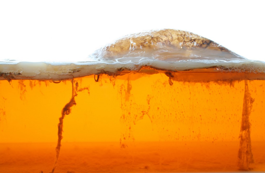 Kombucha refers to any of a variety of fermented, lightly effervescent sweetened black or green tea drinks