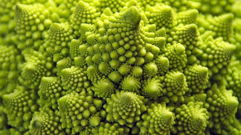 Fractals found in a Romanesco Broccoli or Roman Cauliflower