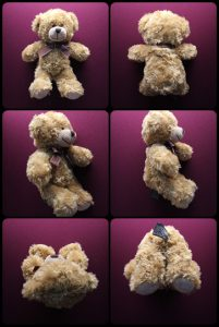 The Wellesley Bear from different point of view