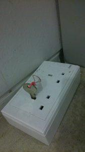 Key plug..? Plug key! Literally
