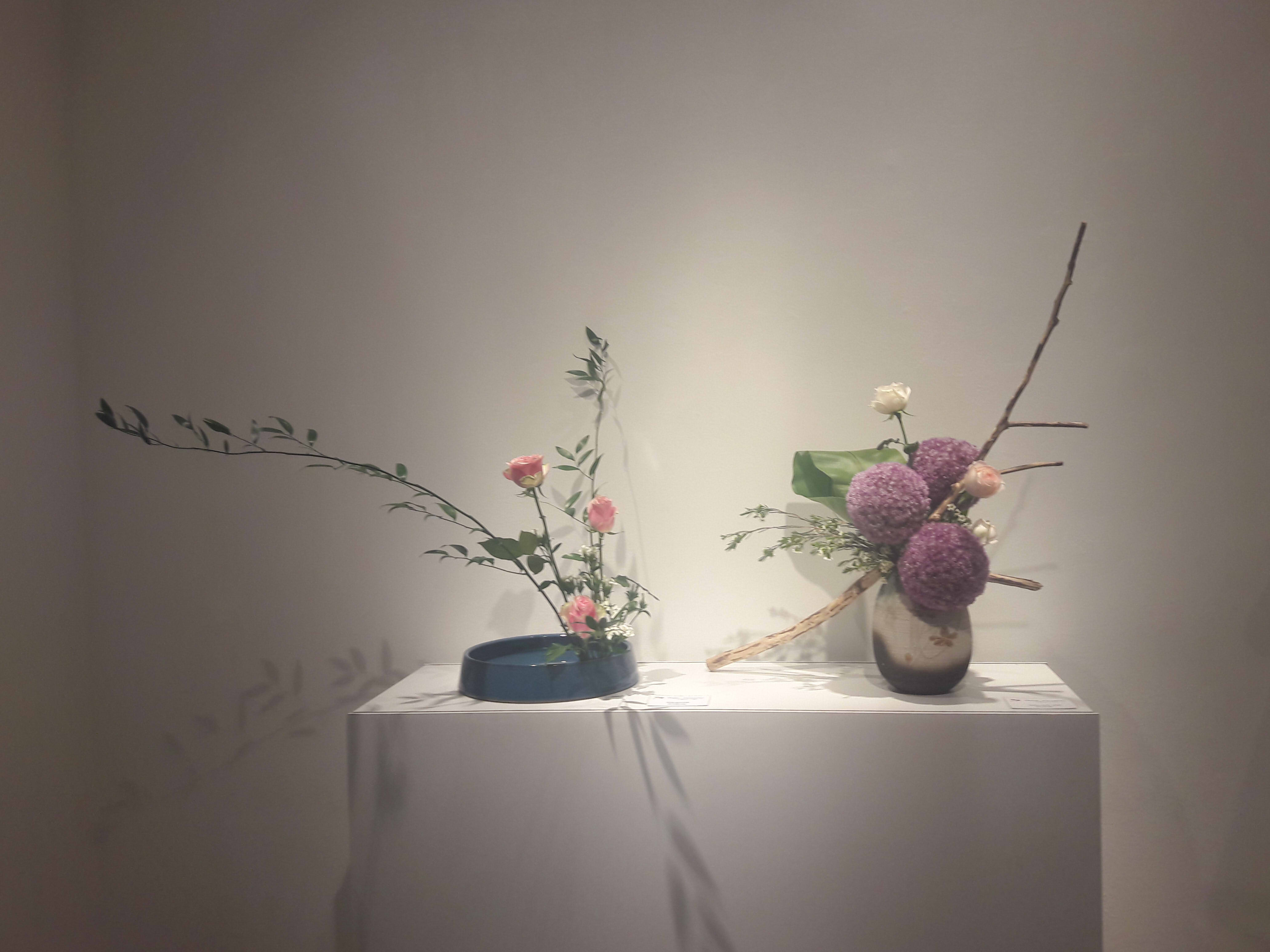 Ikebana, back to basics (or: A Paltry Attempt at What is Known as Journalism)