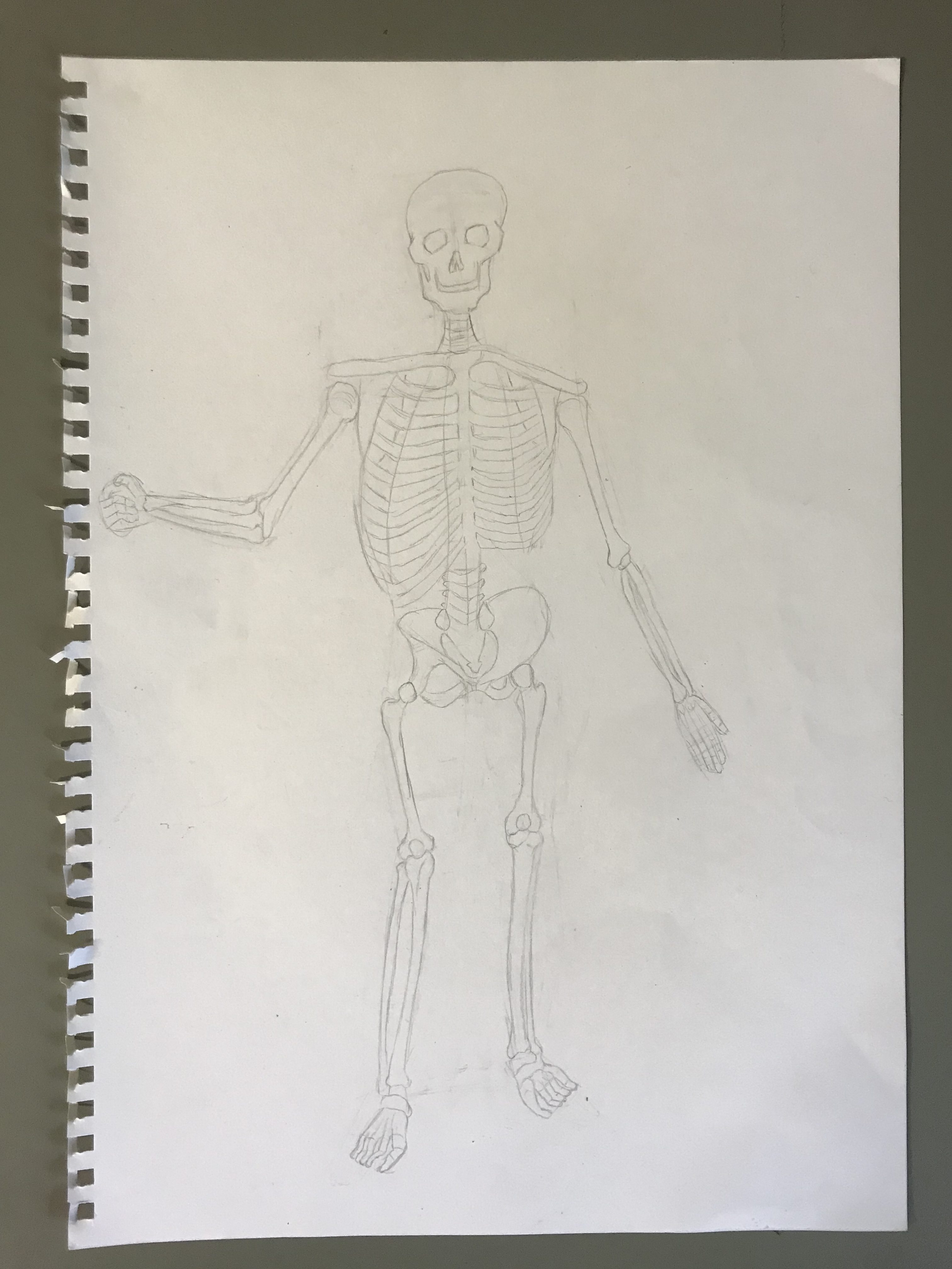 Kinetic Anatomy Dynamic Figure Drawing For Artists And Designers