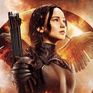 katniss-everdeen-the-hunger-games-39076855-500-500