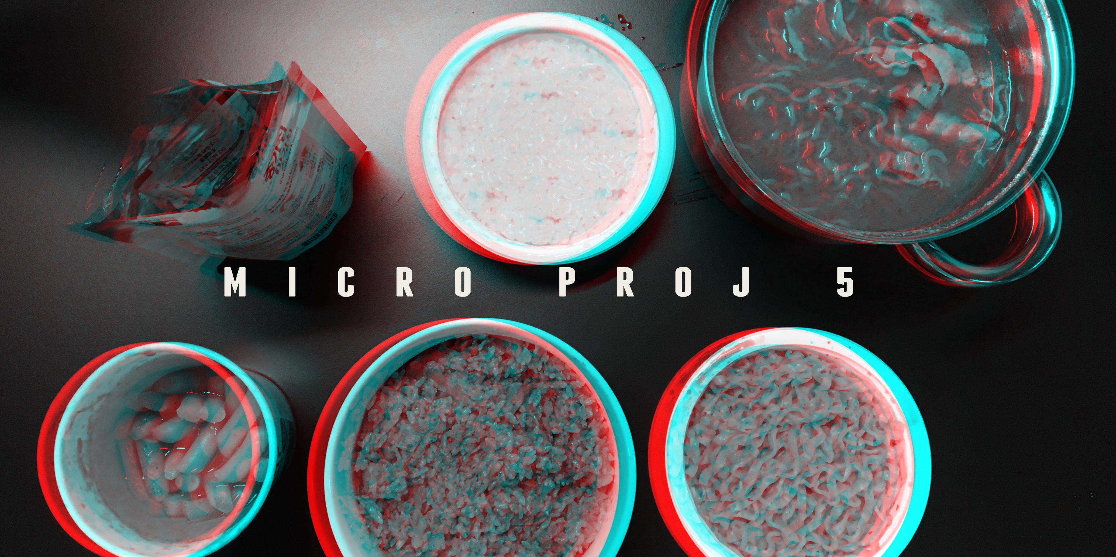 EXPERIMENT INT: MICRO-PROJ 5