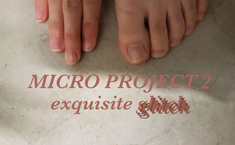 Micro Project 4 // Exquisite Glitch