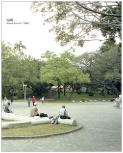 torii-cover.jpg