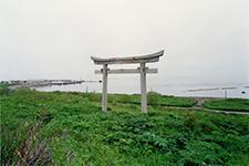 torii2t5