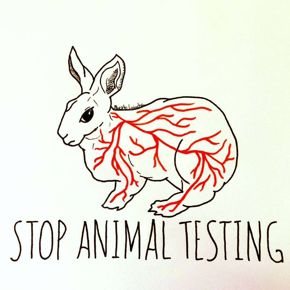 """the inevitability of animal testing in This house does not believe animal research the motion that """"this house believes that animal testing is a that animal rights was an inevitability."""
