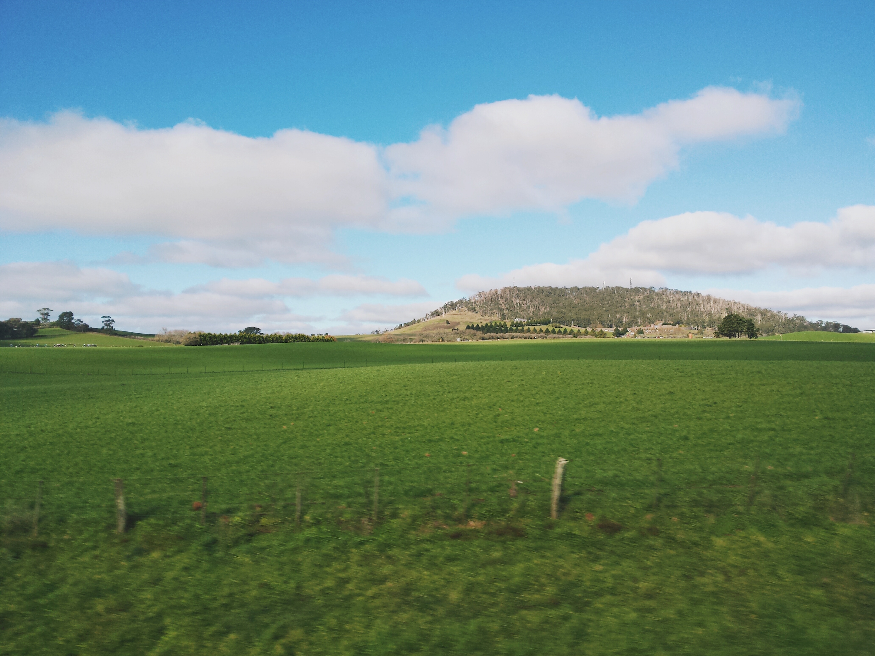 View from our bus window on the way to Ballarat, Victoria