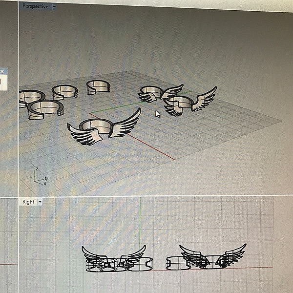 3D modelling of winged ring in rhino, which ready for printing.