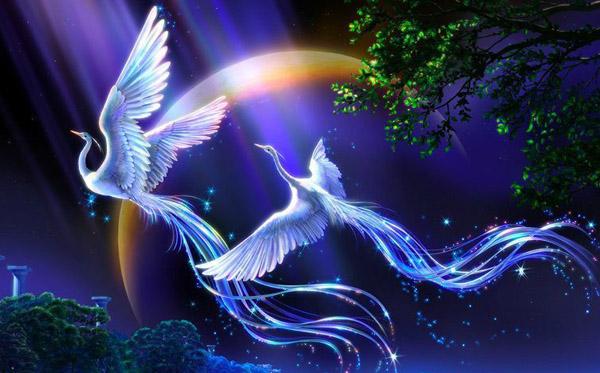 honghu-white phoenix image source: http://www.wulin.cn/uploads/2016/10/1715.jpg