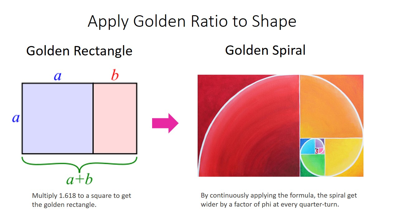 Apply it to a square will get the golden rectangle.  By continuously applying formula, the spiral get wider by a factor of phi at every quarter-turn becoming golden spiral. Golden spiral or called the  Divine Proportion is the tool used by artists and sculptors to achieve accurate proportion and aesthetic composition.