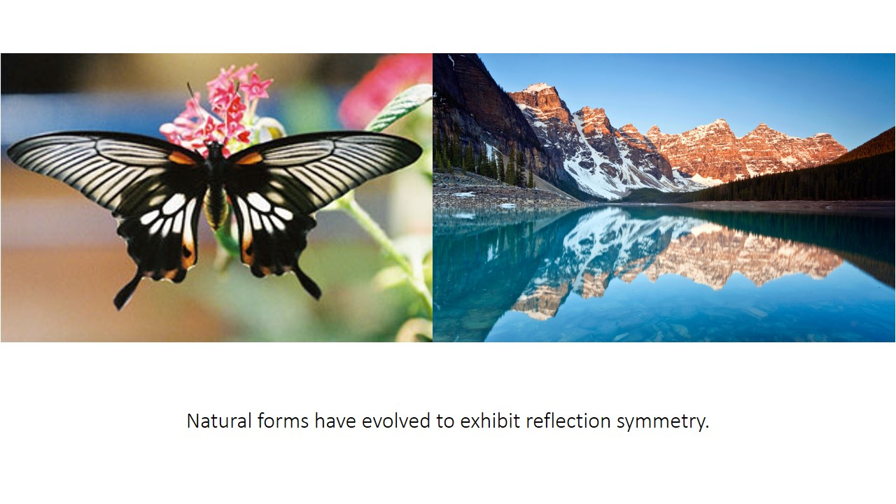 Examples of natural forms with reflection symmetry are: A butterfly exhibits reflection symmetry in its body and wings and the lake acting as a giant mirror which reflects the scenery horizontally.